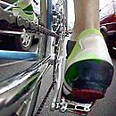Mit dem Rennrad unterwegs (Foto: dpa)