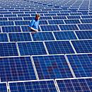Solarpark (Foto: dpa)