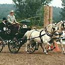 Lange zeit DAS Transportmittel für Reisen: die Kutsche