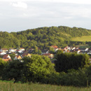 Grügelborn (Foto: Bonenberger / Klos)