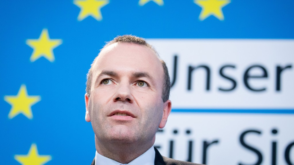 Manfred Weber (picture alliance/Kay Nietfeld/dpa)